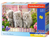 Three Grey Kittens - Puzzle - 300 Teile