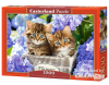 Cute Kittens, Puzzle 1500 Teile