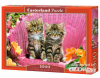 Kittens on Garden Chair - Puzzle - 1000 Teile