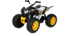 Rollplay Powersport ATV, 12V, schwarz
